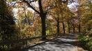 Gruszków jesienią